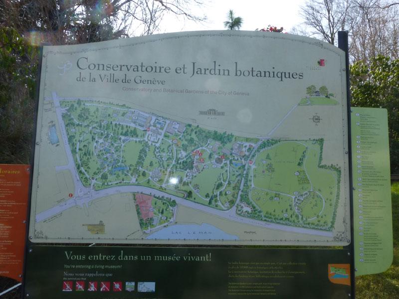 Le Jardin Botanique De Geneve A Debute Sa Reconversion A L